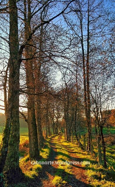 O Camiño Primitivo preto de Lugo