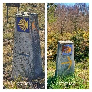 A cuncha sinala de forma distinta en Galiza e Asturias
