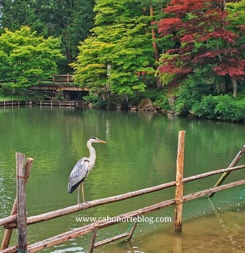 Lago cerca de Takayama
