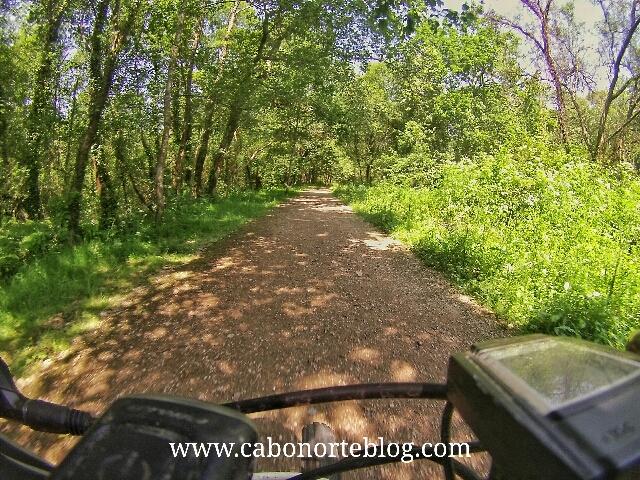 El Camino de Santiago Portugués en un tramo de tierra