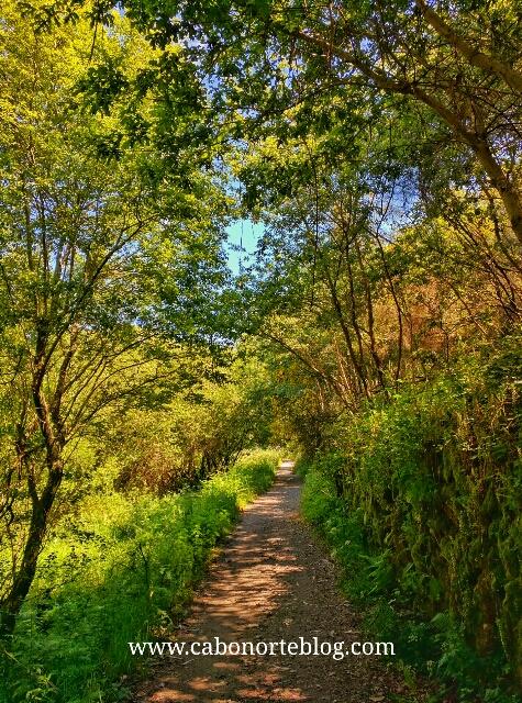Tramo del Camino Portugués por el Concello de Barro