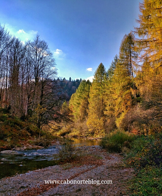 El río en Casas de Irati, selva de irati, otoño