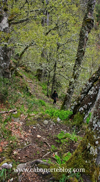 Senderismo en Muniellos, asturias
