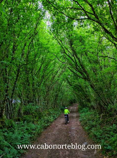 En bici por el Parque Natural de Morvan, Francia