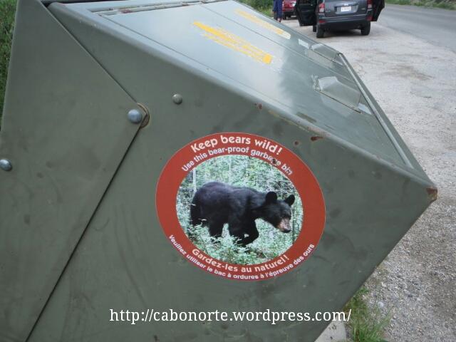 Papelera anti-osos