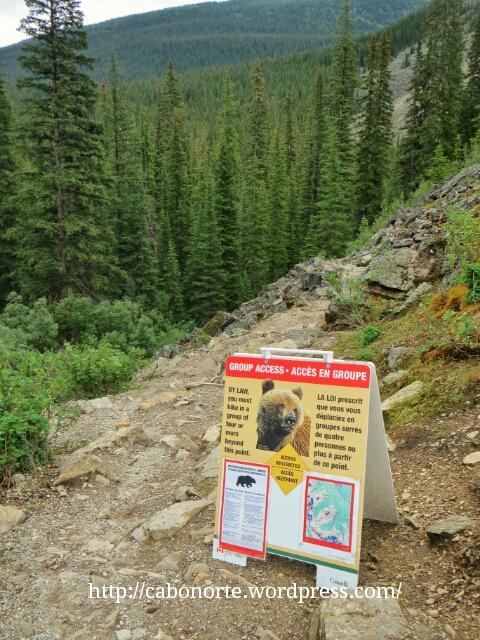 Ruta prohibida por presencia de osos