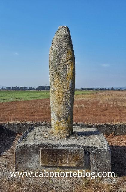 Pedra Alta da Antela (Sarreaus)