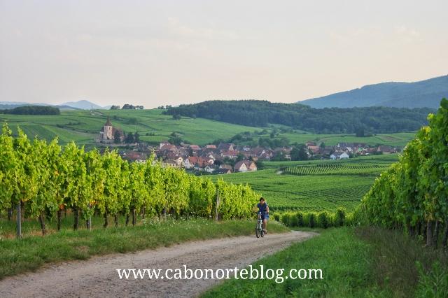 Ruta en bici por la Alsacia